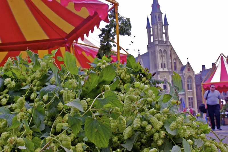 7 Reasons Not To Miss Poperinge Beer and Hop Festival