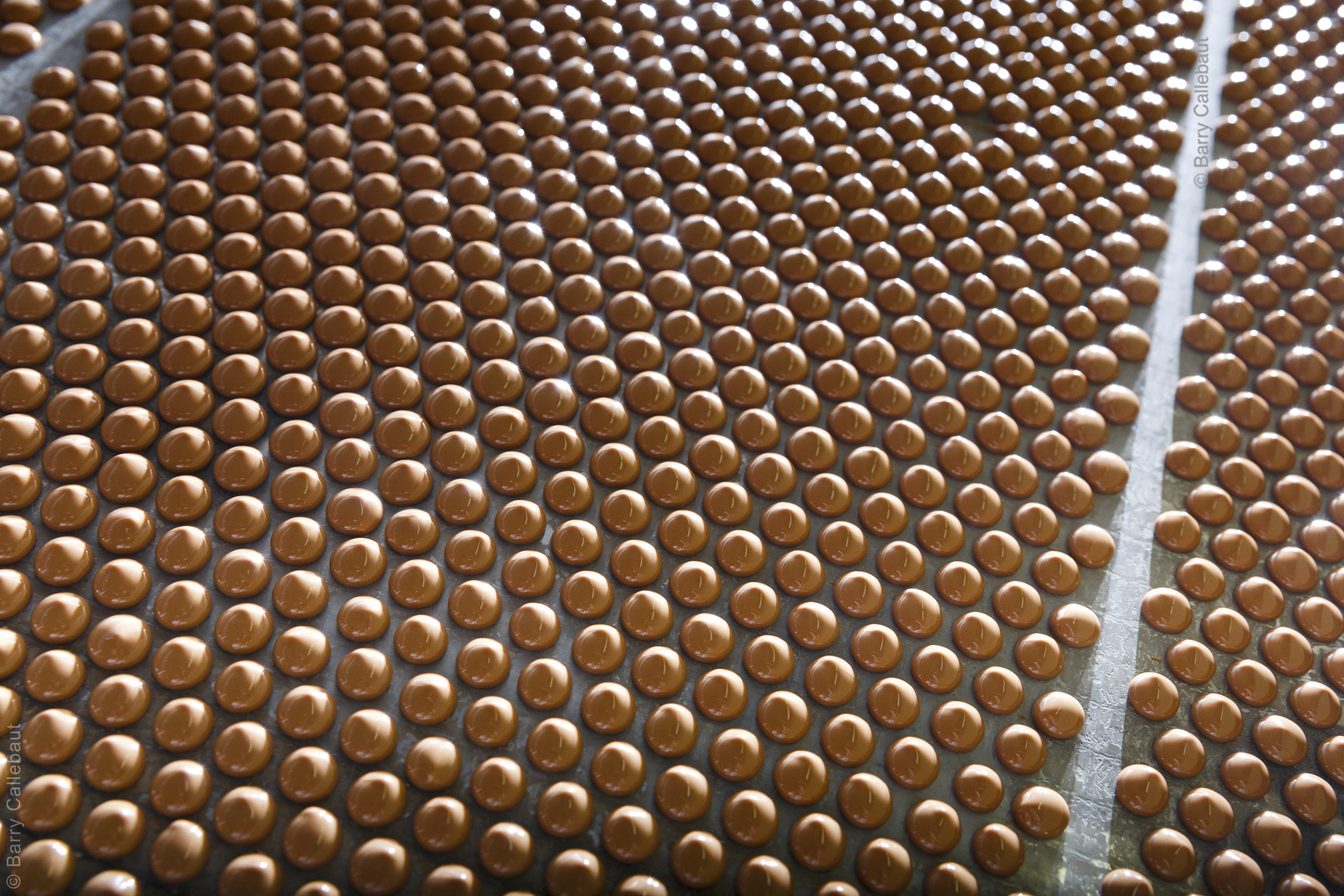 Barry Callebaut   10 Facts: World's Largest Chocolate Factory